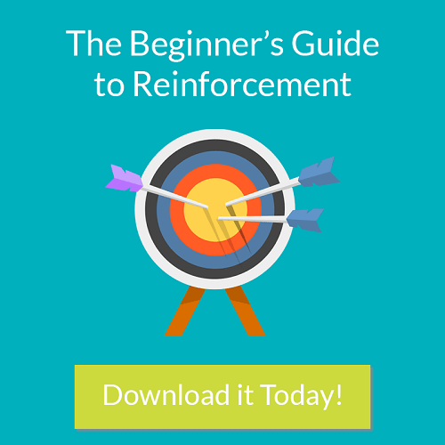 The Beginner's Guide to Reinforcement