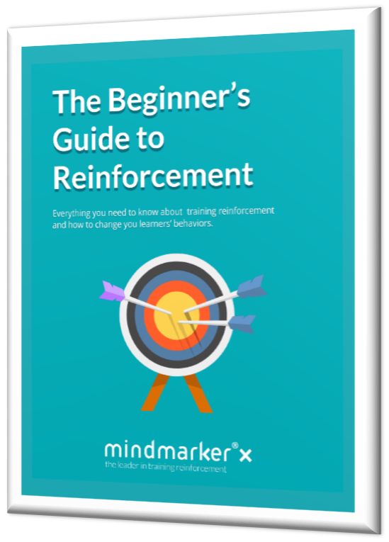 beginner's guide to reinforcement